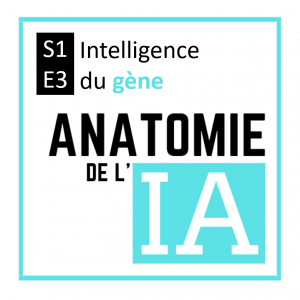 anatomie de l'IA - intelligence du gène